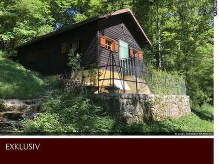 Wochenendhaus mit Waldfläche - Idylle, Ruhe und Erholung