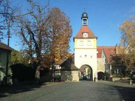 ... Der Klassiker - Fränkisches Stadthaus (Neubau/Erstbezug)..