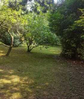 Traumhaft schönes Gartengrundstück in HD-Handschuhsheim  für Naturliebhaber zum Genießen und Werken