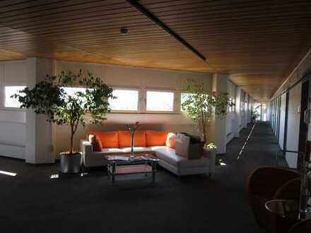 Provisionsfrei: 380 m² Büroetage am Bavariafilmplatz