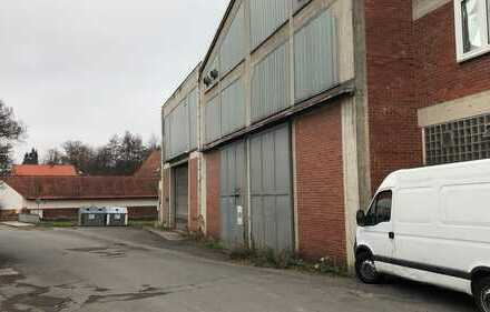 Großzügige Kaltlagerhalle mit 315qm zu vermieten
