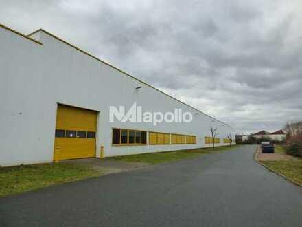 bei Biebesheim | Logistikflächen ab ca. 3.300 m² | PROVISIONSFREI zu vermieten