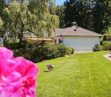 Freistehender Bungalow mit 1501 m2 Grundstück für ev. weitere Bebauung - nur 9 km bis Oberursel -