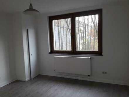 Frisch sanierte 1 Zimmer Wohnung in Stadtpark Nähe
