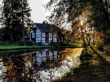 Die Ziebach-Mühle, traumhaftes Wohnen auf einem Naturparkähnlichen Grundstück!