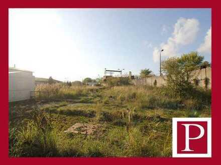 Großes Grundstück in Tessin - flexible Entwicklungsmöglichkeiten!