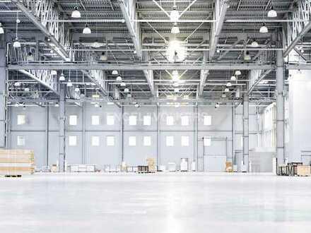 Landau - Flexibel nutzbare Hallenfläche direkt an der A65 - Engel & Völkers Commercial Karlsruhe