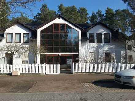 Sonnige 2-Raum-Wohnung mit Terrasse