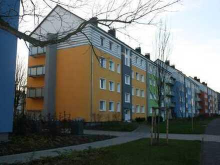 Modernisierte 3-Zimmer Wohnung in Haspe-Quambusch + zwei Balkonen