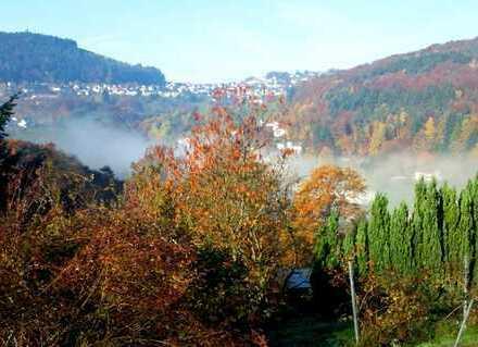 Baugrundstück in toller, sonniger Aussichtslage von Wilhelmsfeld