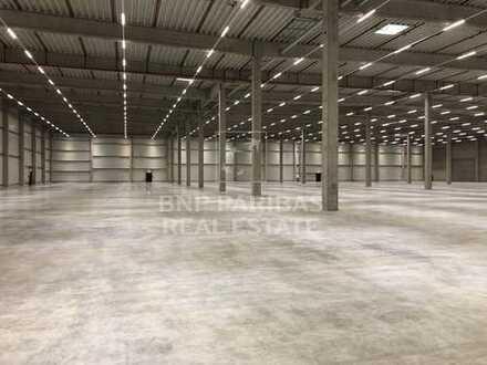 Hallen-, Lager- und Produktionsflächen