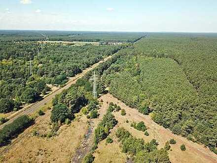 3,48 ha Forstliegenschaft