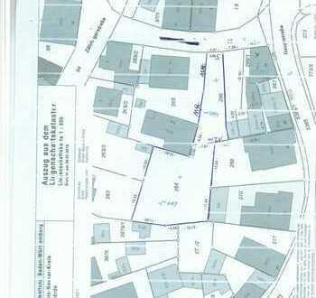 Herrlicher Bauplatz für Stadtvilla-DH-MFH mitten in Dielheim bei Rauenberg!!