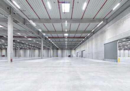 """""""BAUMÜLLER & CO."""" - 30.000 m² Hallenfläche - Neubau mit Rampen- und ebenerdiger Andienung"""