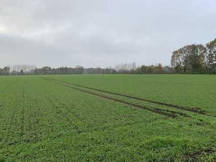 8,1 ha Ackerland in Vreden, Ellewick - Crosewick zu verkaufen