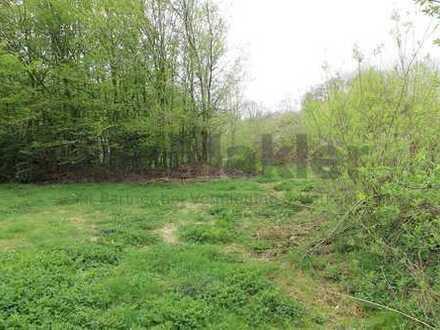 Großzügiges Grundstück in schöner, grüner Lage