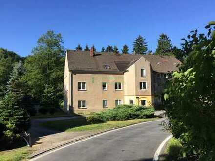 1-Raum-Wohnung im EG umgeben von Natur pur in 01909 Schmiedefeld!