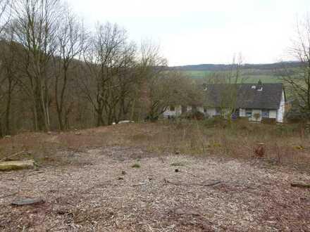 Wohnen mit Aussicht - einmalige Waldrandlage in Alfeld!