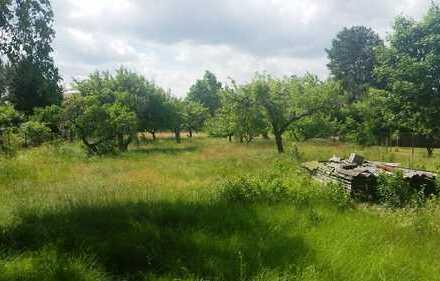 *** Nur noch ein Grundstück frei- sonniger Grund in Strausberg Nord