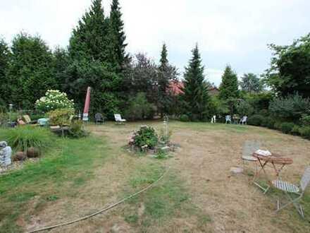 460,5 m² große gepflegte Baulücke in Wittingen für den Bau einer Doppelhaushälfte