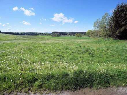 ***Landwirtschaftliches Grundstück - Gemarkung Arlesried bei Erkheim***