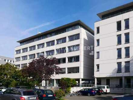 Büroflächen gegenüber dem Marienbergpark