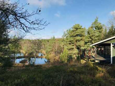 Ferienhaus mit großem Grundstück und fantastischer, ruhiger Lage