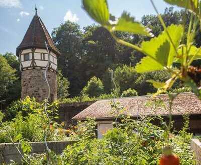 Tolles Zimmer mit riesigem Garten in Uninähe - All inclusive