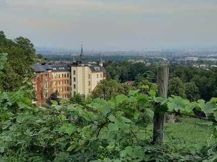 Attraktive 3-Zimmer-Wohnung mit Balkon, Terasse und Wintergarten