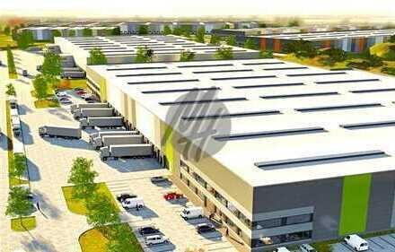 PROVISIONSFREI! NEUBAU! Moderne Lagerflächen (1.400 qm) & Büroflächen (250 qm) zu vermieten