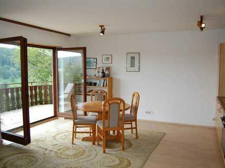 Schönes, möbliertes 1 Zimmer-Appartement - ruhig und gepflegt - Pendler bevorzugt