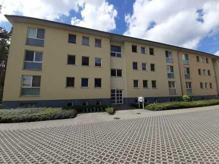 großzügige 3 Raum Wohnung mit Waldblick