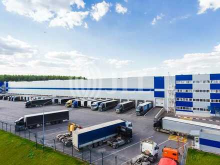 Modernes Logistikzentrum Dresden   im Bau   bis ca. 20.000 m² Hallenfläche