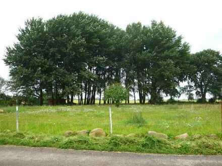 Görmin OT Böken Naturnahes Grundstück in ruhiger Randlage