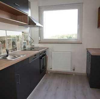 Neu renovierte 2 Zimmer Wohnung in Stein / Wohnung mieten