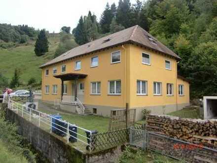 NEU RENOVIERTE 4-Zimmer Wohnung in Schönau!