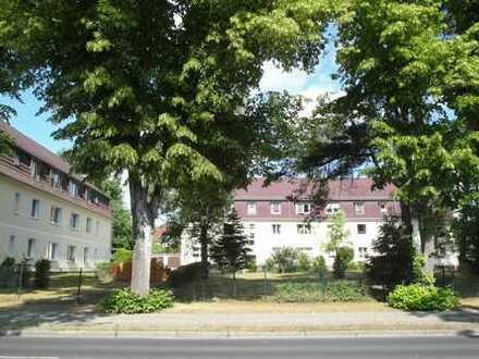 Bild_Grüne Lage, tolle Wohnung, günstige Miete -Berliner Str. 82 in Strausb.