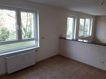 2 - 3 ZKB - Wohnung ( offene Küche )