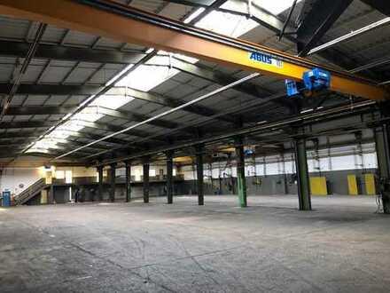 Hallen/Büroflächen provisionsfrei zu vermieten