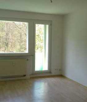 *schöne 3 Zimmer Wohnung mit Balkon und Waldblick*