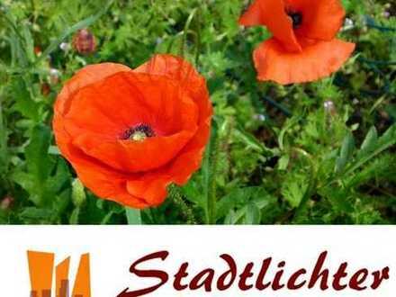 °°° Hochattraktive Kapitalanlage: 2-Zi.-Wohnung (DG) am schönen Oberrhein BEI Baden-Baden! °°°