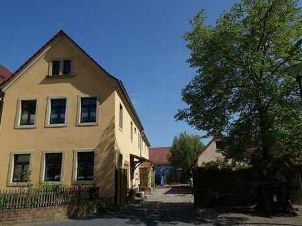 Lichtdurchflutetes saniertes Gutshaus mit großzügigem Wohnraum und kinderfreundlichem Außenbereich