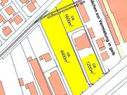 Gewerbegrundstück, 6.800 m², teilbar ab 1.200 m², in 72636 Frickenhausen zu verm.