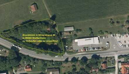 Großes Grundstück direkt an der Ulmerstrasse -