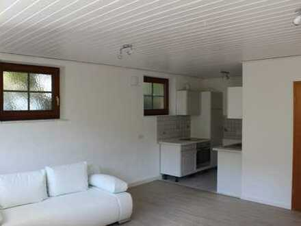 Vollständig renovierte 1-Zimmer-Erdgeschosswohnung mit Einbauküche in Murrhardt