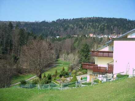 Neuwertige 2,5-Zimmer-Terrassenwohnung in Bad Herrenalb - Bernbach
