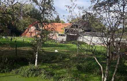 abbruchreife ehemaliger Hof mit landw. Fläche- Oldenbrok-Mittelort