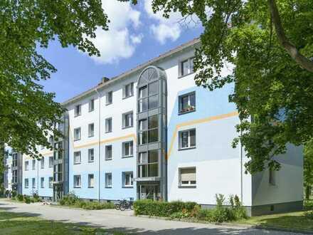 5-Raumwohnung in der Altstadt