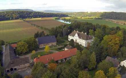 Helle Altbau Whg Parkett, großzügig & gemütlich, Weserblick,Kamin,Stuck,Schloss,geschmackvoll