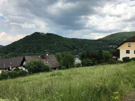 Amorbach, zwei nebeneinander liegende Grundstücke, auch einzeln veräußerbar